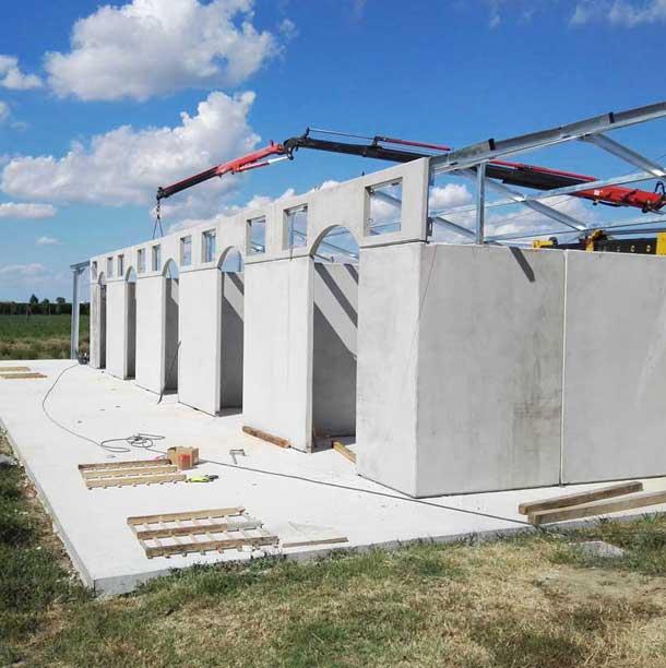 box-cavalli-costruzione